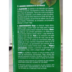 VENEZIA JARDINERA 50 CM GRAFFIATO
